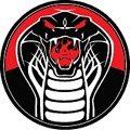 VZW Cobra